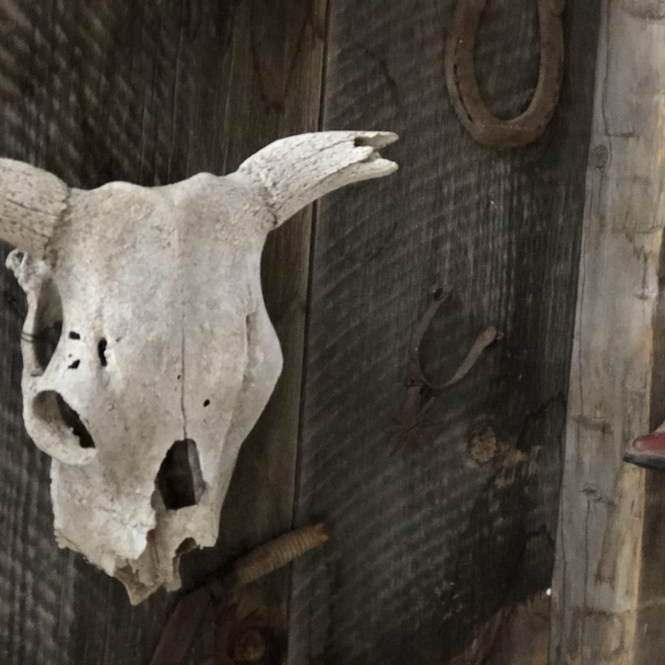 Diamond S. Ranch Barn in Sierra Valley inside the Barn decor skull