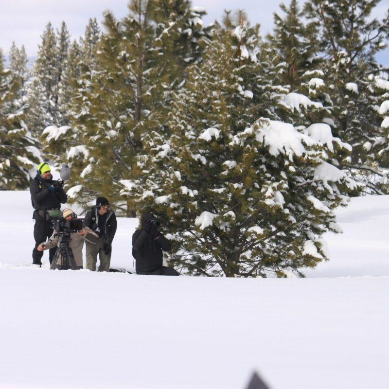 Explore! Sierra Touring Company hosts Jonny Moseley and his film crew of Visit California on the snowmobile tour